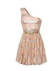 Rare One Shoulder Sequin Lace Dress
